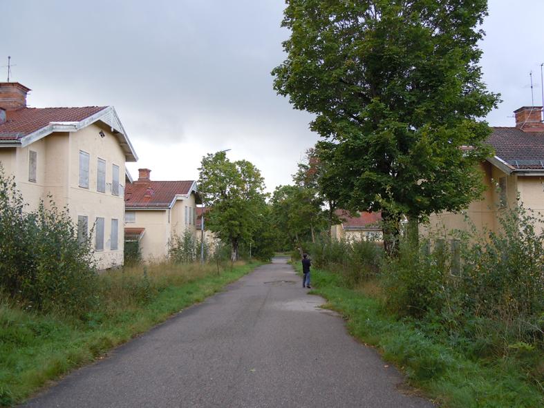 Björkallén i Källfallet, Grängesberg